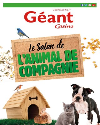 Le salon de l animal de compagnie